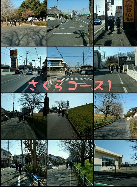 2017_3_5 さくらマラソン試走会_1.jpg