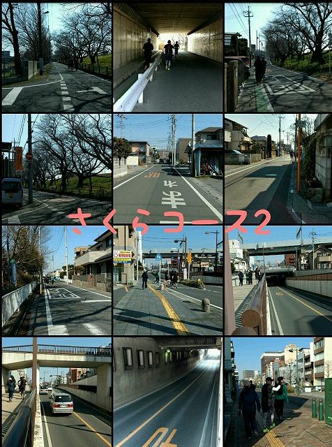 2017_3_5 さくらマラソン試走会_2.jpg