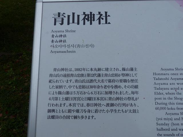 P1030606.jpg