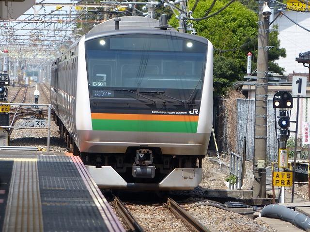 P1040076.jpg